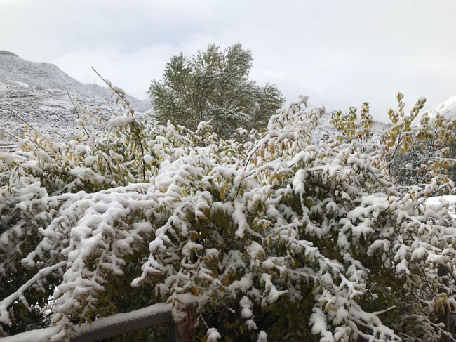 高寒区域的第一场雪 让我们配合为孩子加一度平坦
